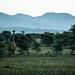 Natural beauty of Tanzania