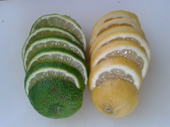 Green and yellow citrus slices (bob watt) Tags: mobile fruit lemon july samsung slice citrus lime 2015