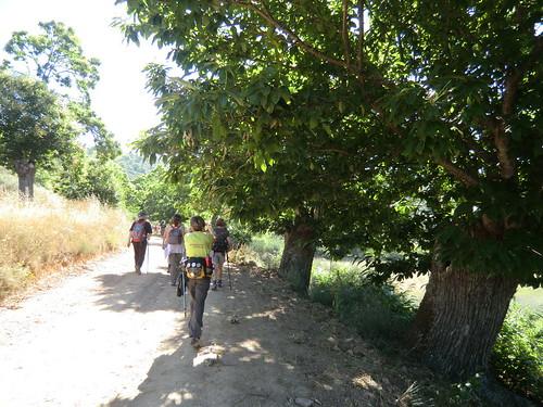 Fotografía Paquita Valdi Marcha 391 27 y 28 de Junio Parque Natural de la Encina de Lastra Ourense (2)