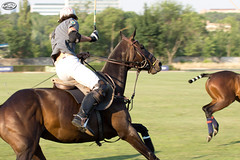 Polo Match (Myprofe) Tags: horse field caballo polo teamsport chukkers clubdecampovillademadrid copavolvo equestrianpolo fieldboards cibaolapampa campeonatoabiertodepolodemadrid mariachisarmada federacinmadrileadepolo