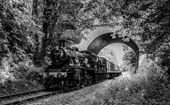 Mono frame (Peter Leigh50) Tags: bridge trees leicestershire leicester great central railway 260 gcr birstall ivatt 47521