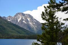 DSC_0349 (afagen) Tags: mountain lake nps wyoming nationalparkservice grandteton jacksonhole grandtetonnationalpark jennylake