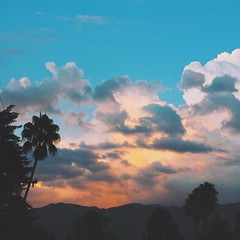 End of July Sky Storm (andiface!) Tags: sunset landscape dusk palmtrees pasadena stormclouds sangabrielmountains southpasadena mountainrange thunderheads landscapephotography summersky californiaskies summerskies vsco rainbowsherbt