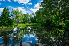 The duck pond (ErikN86) Tags: blue sky reflection tree green nature water landscape mirror duck pond sony sonya77ii
