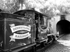 Disneyland Railroad (vickilw) Tags: bw train disneyland onthemove week5 7daysofshooting blackandwhitewednesday
