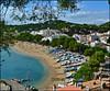 Playa de Llafranc - (Girona) (Luisa Gila Merino) Tags: playa agua girona barcas paisaje costa mar árboles coníferas azul llafranc