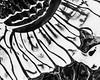 (carson fiske) Tags: ferrofluid