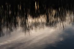 clouds_reflection_9002 (McConnell Springs) Tags: mcconnellspringspark clouds reflection pond water nature lexingtonky lexingtonparksrecreation