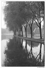 2016-10-14_005 (Aaron Cat) Tags: aaronhsu canon eos 400d ef35mm f20 usm beijing river tree mirror