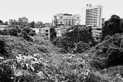 Kuching, Borneo, Malaysia (bm^) Tags: travel kuching sarawak maleisië architectuur architecture boom bomen tree trees distagont228 distagon282zf nikon d700 bw blackandwhite black white blackwhitephotos zf2 zeiss carl nikond700 zwart wit zwartwit reis carlzeiss city urban skycrapers wolkenkrabber my