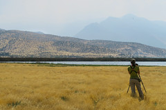 First Stop - Batuco Wetlands, Santiago, Chile (Paul B Jones) Tags: batucowetlands humedaldebatuco regiónmetropolitanadesantiago chile birder birding birdwatcher canonpowershotg7x g7x southamerica southamerican südamerika amériquedusud sudamerica chilean chilena photo photograph image picture trip travel birdschile tour tourism ecotourism tourist birdwatching