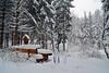 Wintersport im Zauberwald (Sandsteiner) Tags: winter winterlandschaft wintersport winterwald zschirnstein elbsandsteingebirge sandsteiner