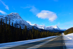 Scenery road (drafiei1) Tags: alberta banff lake louise jasper mountain trees tree mountains cloud clouds landscape scenery scene road 1a hwy1a blue nationalpark