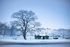 fresh snow (almostsummersky) Tags: snowfall building winter winterstorm street dawn maine snow fortwilliamspark trees road tree travel fortis sky park field morning fence capeelizabeth unitedstates us
