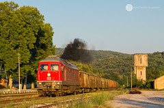 Facing the sunset (BackOnTrack Studios) Tags: db cargo bulgaria panaguyrishte ludmilla 232 411 232411 freight train diesel locomotive lugansk teplovoz