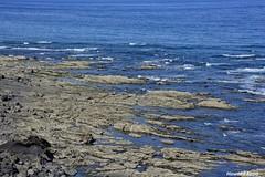 Al descubierto. (Howard P. Kepa) Tags: paisvasco euskadi gipuzkoa mutriku marcantabrico mareabaja rocas olas costa litoral