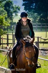 Concentration.jpg (Jrgen Schillat) Tags: nikon morgen pferd reiten jrgen horseriding d7000 schillat