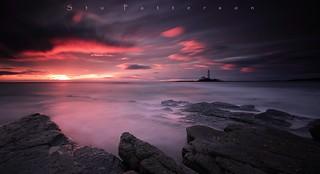 Crimson Splendor