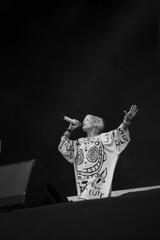 Die Antwoord (Annika Sorjonen) Tags: show summer music festival canon suomi finland concert gig review band rave rap seinäjoki kesä 2015 keikka provinssi festivaali törnävänsaari 5dmk3 dieantwoord provinssi2015