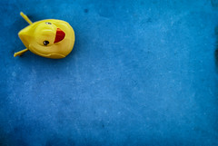 How To Cook Duck (hbmike2000) Tags: blue texture yellow contrast paper duck nikon bright pov fromabove lookingup plastic negativespace d200 minimalism odc weeklytheme hcs saturatedcolor theflickrlounge clichesaturday hbmike2000 plasticrubberduck
