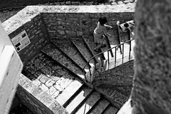 Promenade / Walking (Solylock) Tags: bw dog chien window festival lady stairs blackwhite photographie panel streetphotography nb rise dame panneau monte fenetre noirblanc lectoure escaliers 2015 photoderue festivalphoto ltphotographique