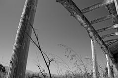 Open your mind, embrace failure (keko click) Tags: estacinbaezabegjar baezautiel baezabegjar estacin bu railwaystation bw bn