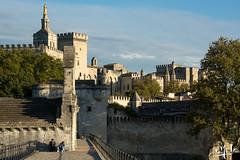 Sur le pont d'Avignon / On Avignon's bridge (christian_lemale) Tags: provence france nikon d7100 avignon pont bridge palais palace papes popes palaisdespapes