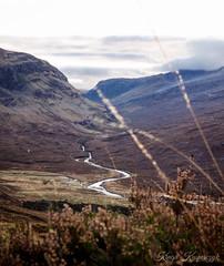 Wester Ross (creyala) Tags: wester ross scotland nikon d7000 highlands heather mountains river sky landscape lightroom