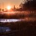 huron marsh sunrise