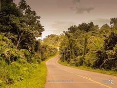 CARRETERA A MOMPICHE (Marcelo Quinteros Mena) Tags: road ruta ecuador carretera route estrada rodovia mompiche