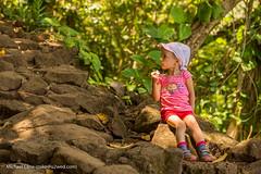 Kauai2015-043.jpg (Michael_Cline) Tags: sophie kauai kalalau napali hanakapiai hanakapiaifalls