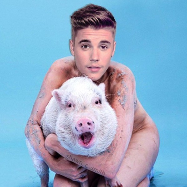 ustin Bieber Is Naked and Hugging a Pig Thanks to MILEY CYRUS Funny Instagram Meme!