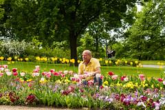 buga140 (1 von 1) (Scotti van Palm) Tags: flower porträt brandenburg flowerpower buga havel selfie havelland flowercolors buga2015 havelregion