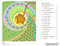 Liquidambars Square: Landscape concept plan