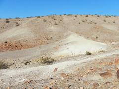 DSCN0336.jpg (DrPKHouse) Tags: arizona unitedstates loco goldenvalley bouse