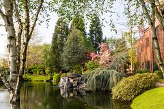 Spring Pond (VictoriaDitkovsky) Tags: park city reflection oregon spring pond landscaping salem