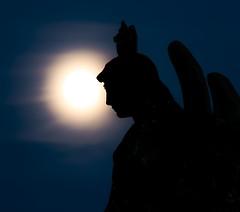 Moon Angel (mark.abrams81) Tags: moon graveyard angel nikon moody nightlight sihlouette d800 8020028