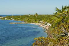 Bahia Honda Beach From the Railroad Bridge (aaronrhawkins) Tags: floridakeys bahiahonda key beach sundown palm tree sand caribbean florida statepark family vacation bridge railroad overhead aaronhawkins