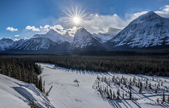 Athabasca Valley (robertdownie) Tags: canada frozen forest mountains river sun clouds rock ice blue sky alberta peaks jasper glaciers sunstar athabasca valley