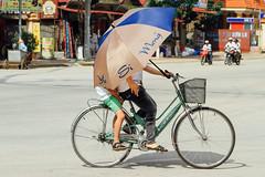 Child Under Umbrella on Bike, Sơn La Vietnam (AdamCohn) Tags: 115kmtobnbninsnlavietnam adamcohn bnbn snla sonla sơnla vietnam bicycle bike geo:lat=21326779 geo:lon=103914251 geotagged ride ridingbike shade umbrella wwwadamcohncom thànhphốsơnla explored flickrexplore