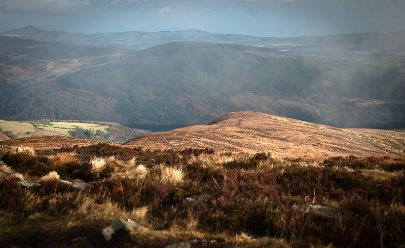 Scarr Mountain, Wicklow NP, Irlandia