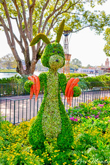 Rabbit (disneylori) Tags: rabbit winniethepooh topiary flowerandgardenfestival unitedkingdom worldshowcase epcot waltdisneyworld disneyworld wdw disney