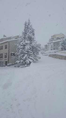 nieve portell enero 2017 (2)