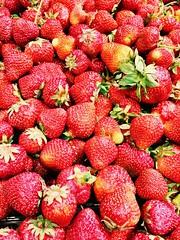 Strawberries grown in Sweden @ 60kr per basket (1/2 kilogram in a basket) (Mister.Marken) Tags: madeinsweden icaliljeholmen strawberry