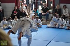 Judo-habay051
