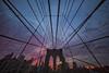 Sunset, Symmetry and Synergy (gimmeocean) Tags: nyc newyorkcity sunset ny newyork skyline brooklyn manhattan symmetry cables brooklynbridge ultrawideangle treyratcliff treyusa