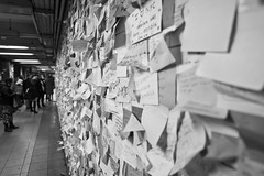Wall of Pain (bw) (Brotha Kristufar) Tags: canon indoors indoor 50mm wide angle subway train commute nyc manhattan city local voting trump hate love politics hilary clinton president presidency election results perspective thoughts concerns worries worried fear disappointment shock race agenda amerikkka government notes postit postits society explore explored