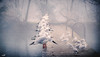 Winter break (VandenBerge Photography) Tags: water winter aare thun switzerland europe retro vintage gull animal bird row riverbath fog haze canon ef100mmf28lmacroisusm