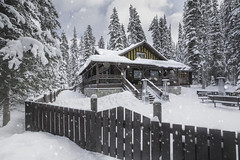 All I wish for Christmas :) (Margarita Genkova) Tags: snowflakes house fence trees winter christmas holiday lake louise clouds banff alberta