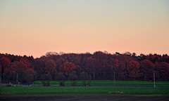Sunset in Ringenberg (Giovanna Franco Photography) Tags: landscape landscapes allaperto germany nikon nikond3200 photographer photography photo photos trees sunset